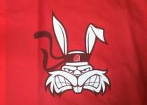 Nadruk - królik karate